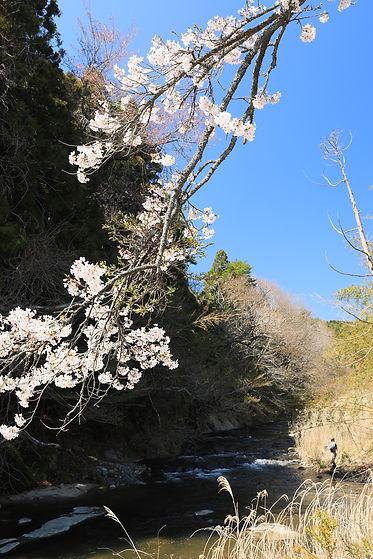 nagamori213.jpg