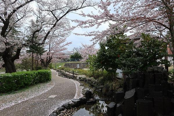 nagamori217.jpg