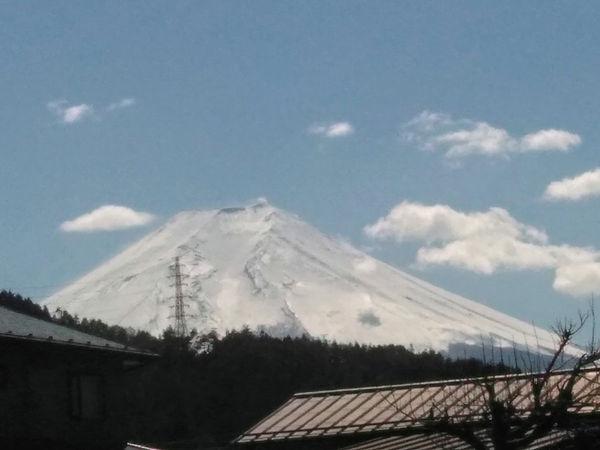 tanaka324.jpg