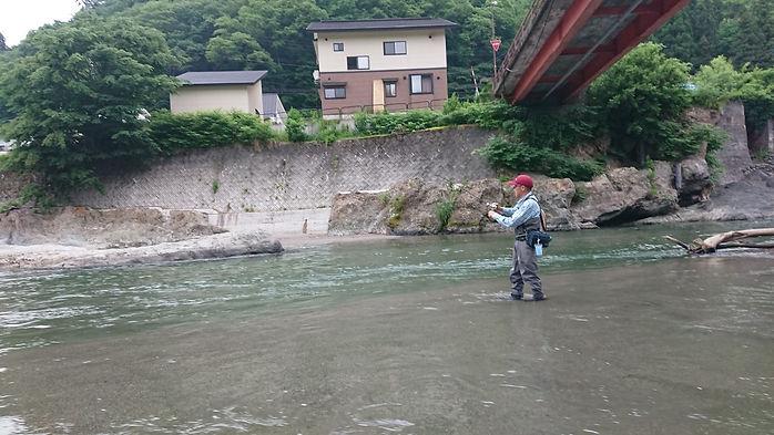 kimura380.JPG
