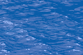 Waves_B.tif