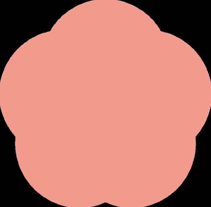 LIHH_circles_rhubarb_light.png