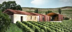 cantina vinicola