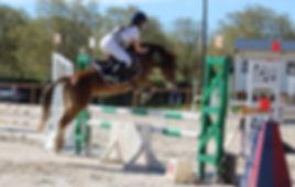 saint-bruno, cheval béziers, poney béziers, équitation, centre equestre béziers