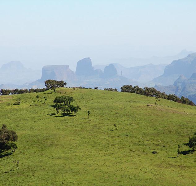 soleil-d-afrique-aethiopien-03-big.jpg