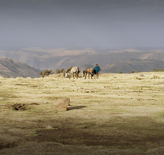 soleil-d-afrique-aethiopien-05-big.jpg