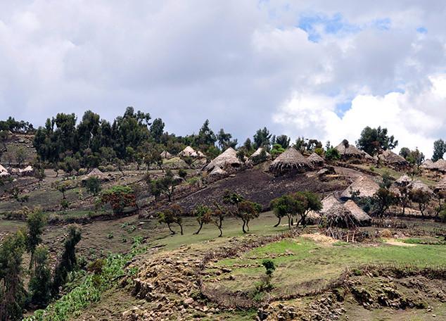 soleil-d-afrique-aethiopien-08-big.jpg
