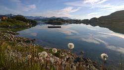 Sommarøy-2014
