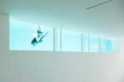 maison aquarium