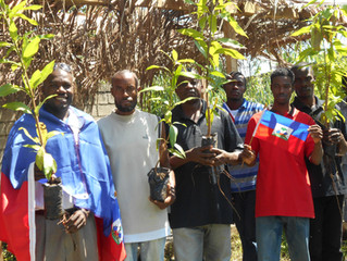 Planting Events during Haitian Flag Day