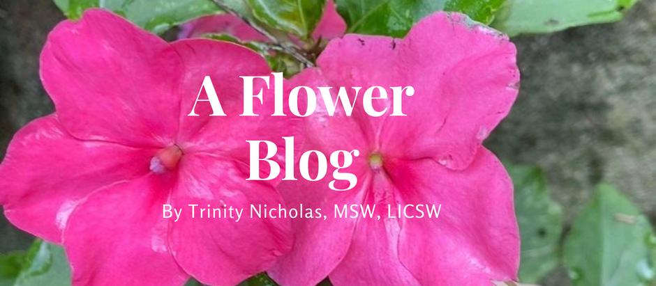 A Flower Blog