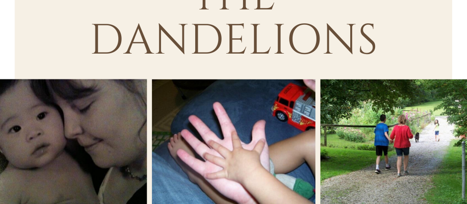 Tending the Dandelions