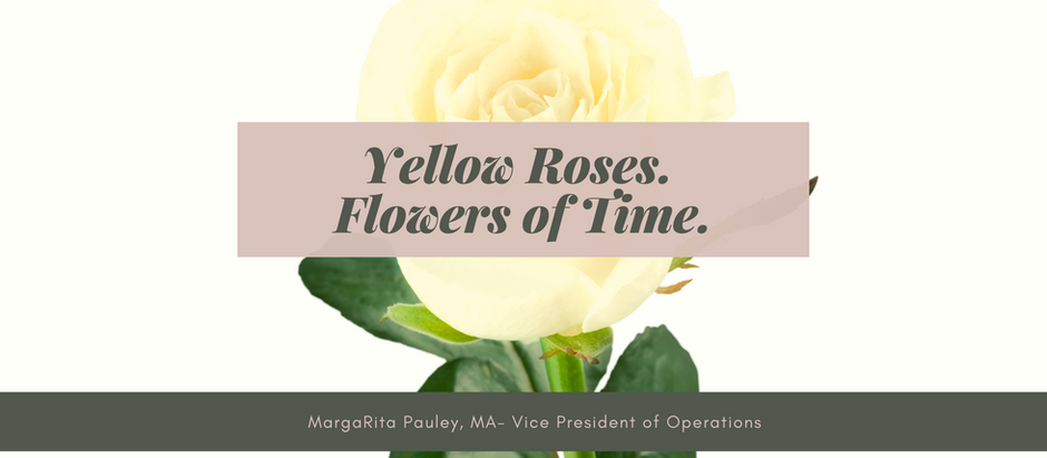 Yellow Roses. Flowers of Time.