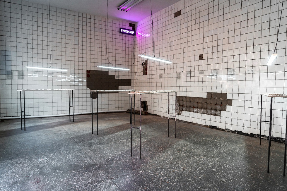 One of the installations (view): The New Branch of the Museum / The «Bukovo» Syndrome (the syndrome of the place)