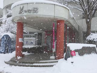 【雪が積もりました❅】