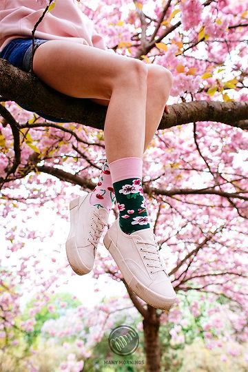 MM_CherryBlossom_Regular_01 .jpg