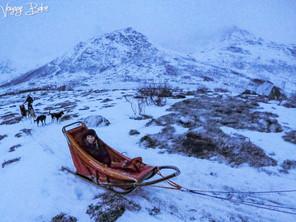 Dog Sledding in Arctic Norway