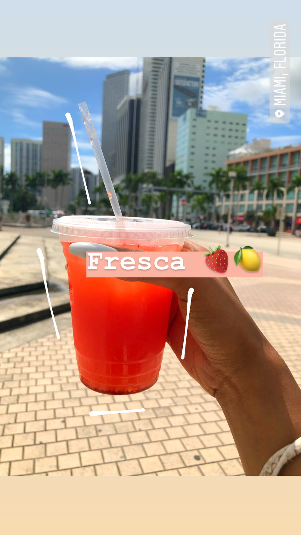 Fun Tours in Miami