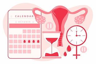 menstrual cycle.jpg