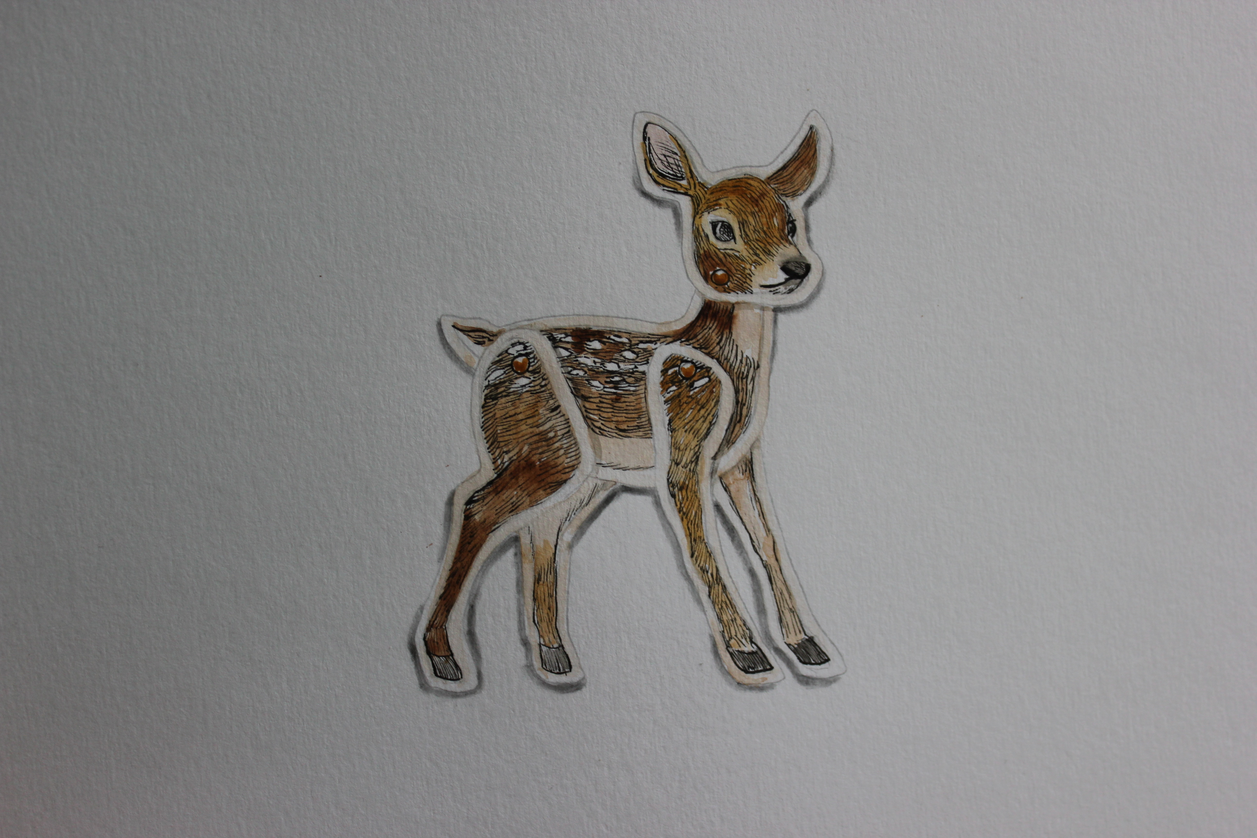 Little Deer