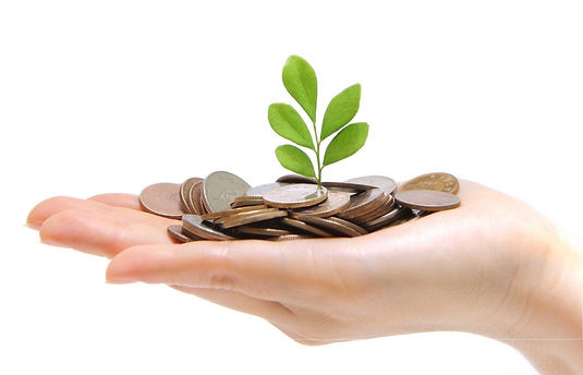 financial_insider resp government grants