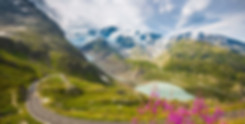 Grimsel Pass Swiss Alps