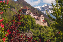Vaduz Castle in Spring