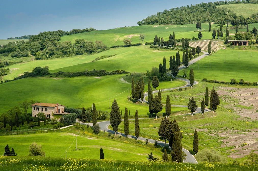 cypress-road-tuscany.jpg