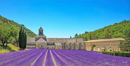 Abbaye Notre-Dame de Sénanque and lavendel fields