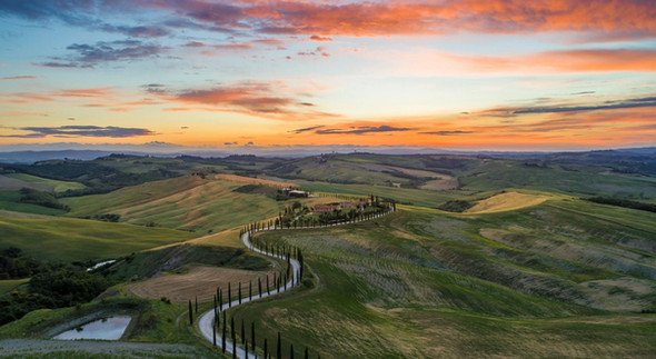 Cypress tree lined road in Val D'Orcia valley in Tuscany