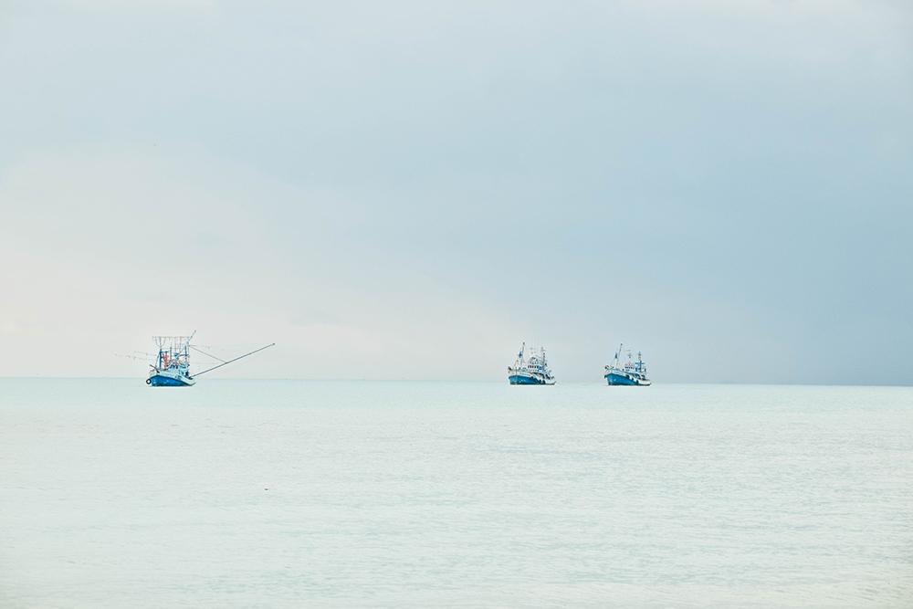 Koh Tao Fishing Boats