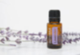 doTERRA Essential Oils for Dummys - Lavender