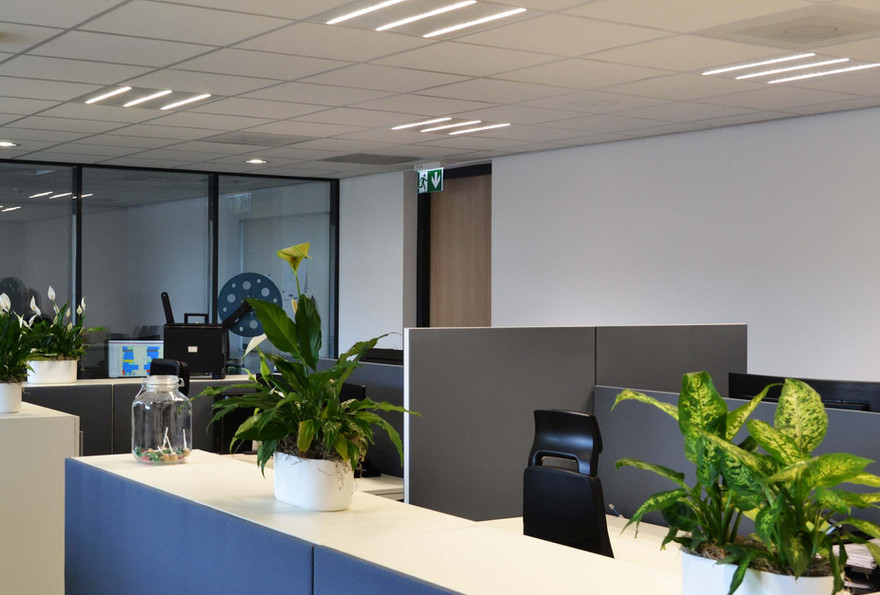 Media Service Maastricht