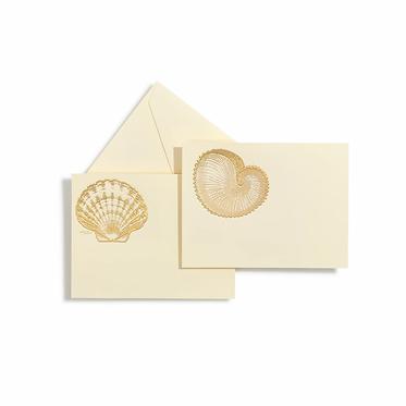 Shells Gold Notecards   Set of 10   Bernard Maisner