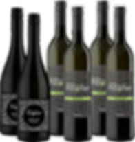 Sämling 88 Weinpaket