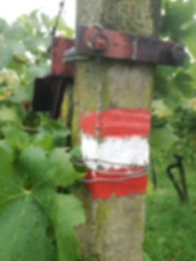 Weingarten Säule mit Herkuntmarkierung