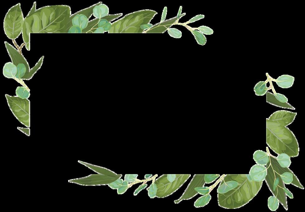 Hintergrund Blätter.png