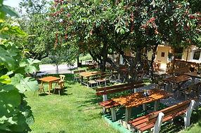 Buschenschank Streuobstgarten - Weinbau