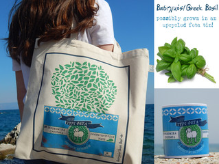 Summer would not be summer without Greek Basil!
