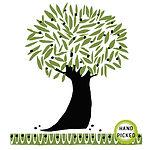 olive tree magnet.jpg