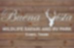 BV Logo_edited.png
