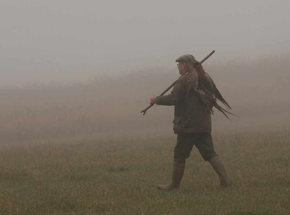 Gamekeeper on a misty day
