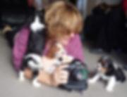 Melissa Bastin, Cavalier King Charles Spaniel Puppies, Canon Camera