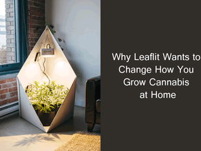 Why Leaflit Wants to Change How You Grow Cannabis at Home