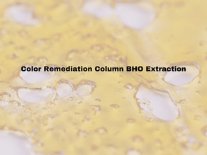 Color Remediation Column BHO Extraction