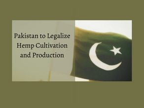 Pakistan to Legalize Hemp Cultivation and Production