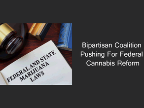 Bipartisan Coalition Pushing for Federal Cannabis Reform