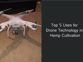 Top 5 Uses for Drone Technology in Hemp Cultivation