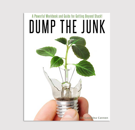 Dump The Junk - Kindle