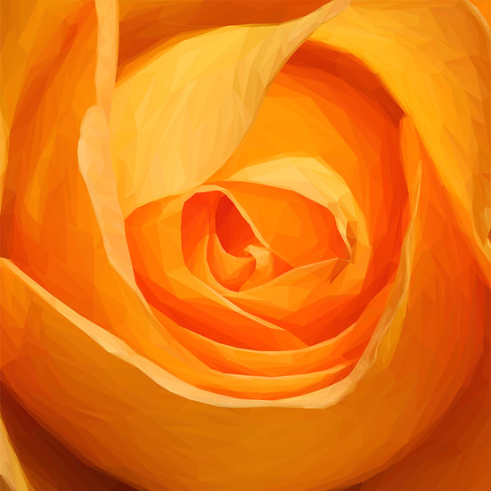 Rosa (Orange) - Andy Walker